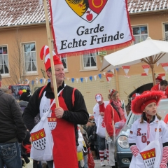 rosenmontagszug_20120221_1871733486